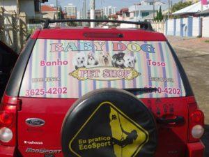 Baby-Dog-Capão-da-Canoa