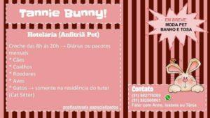 tannie-bunny-porto-alegre